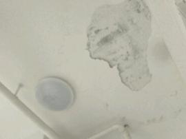 九江职业大学宿舍天花板水泥层脱落 吓坏学生