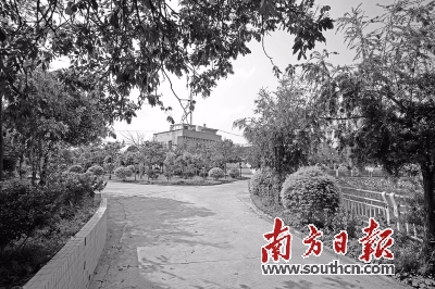 以后的旅游热门地!惠州3年后绿色村庄将超800个
