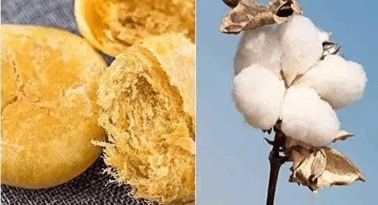 吃下去的肉松可能是棉花做的?食药监现场检查!