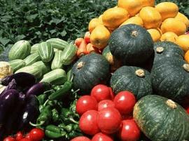 自家阳台或楼顶种瓜果蔬菜有什么诀窍?
