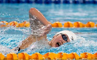 全国游泳冠军赛 我省夺得竞赛成绩与精神文