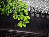 宁波本周依旧雨雨雨 午后出门注意防雷阵雨