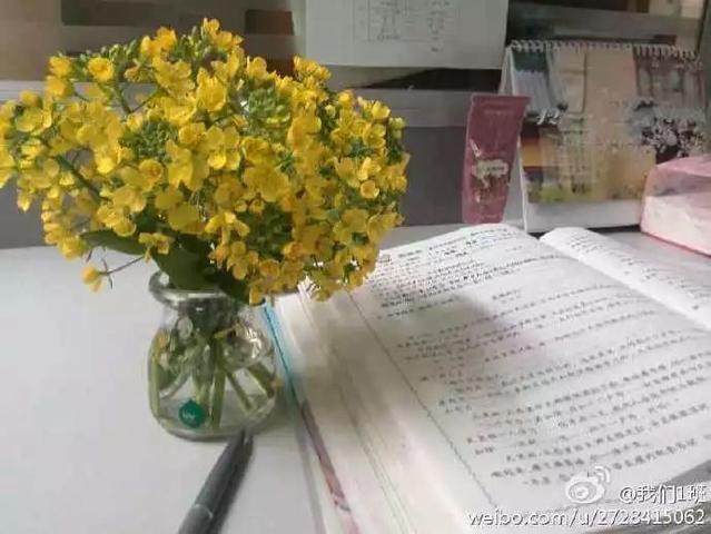 童真捕手王悦薇:逆天小学生作文背后的语文老师