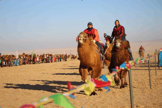 内蒙古沙漠文化节