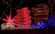 凤城河畔流光溢彩 新春灯会璀璨绽放
