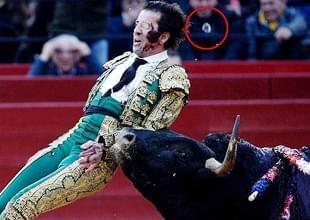 斗牛士遭重击假眼飞出