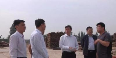 武邑领导调研双违整治和土地卫片工作