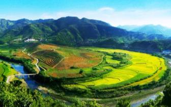 广西第2!西林获批筹建国家地理标志产品保护示范区