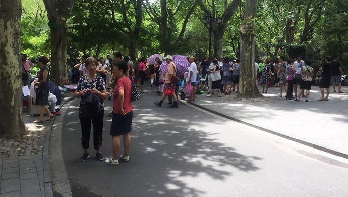 """上海有没有相亲价目表?记者""""卧底""""两大相亲圣地 图1"""