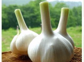 整瓣吃还是剁碎吃?大蒜怎么吃更健康