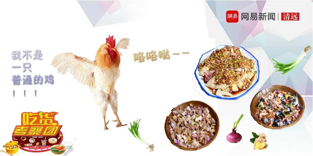 松林食鸡:廿一年的战斗鸡