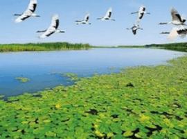 泰州打造里下河生态经济示范区 引领绿色发展