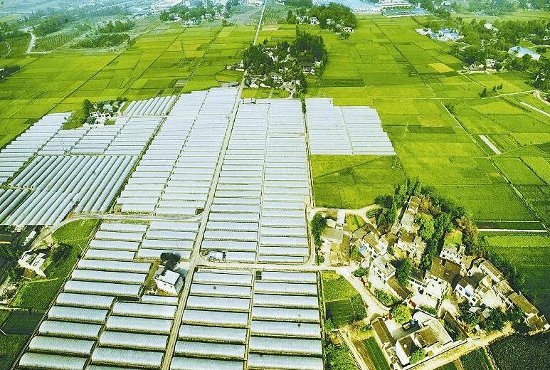 荆州做足农业供给侧改革文章 促进农民增收