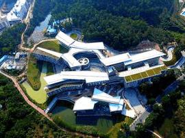 广州将引进一到两所国际知名大学合作办学
