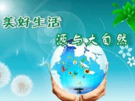 运城市代市长朱鹏在河津调研汾河沿线生态治理工作