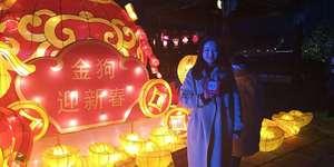 大年初一 带你去看杏花村新春主题灯会