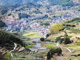 仙居:绿色发展 打造安岭山区特色精品旅游