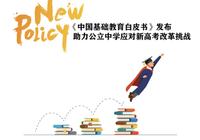 《中国基础教育白皮书》发布  助力公立中学应对新高考改革挑战