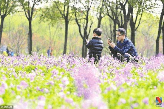 """上海国际旅游度假区成""""长三角""""休闲经济新引擎"""