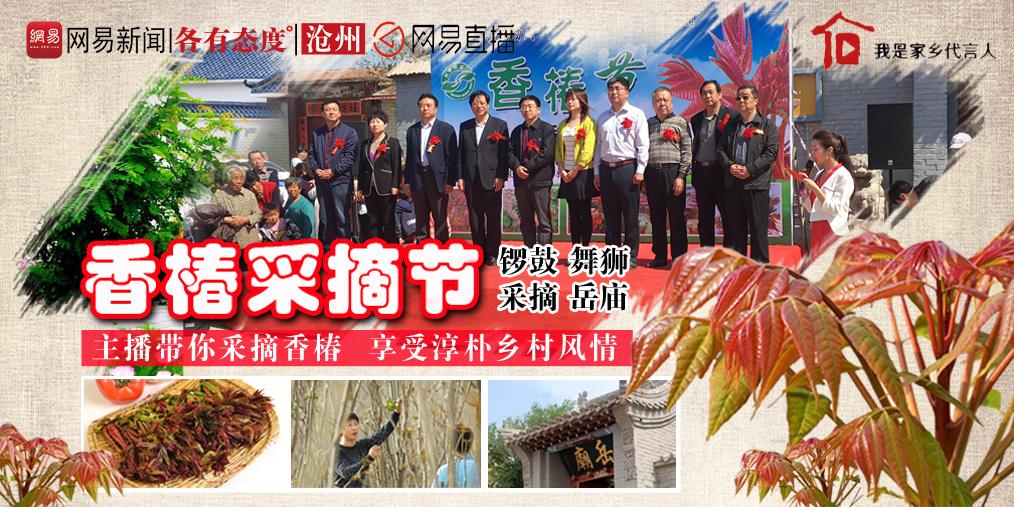 """采春喽!沧县第二届大白洋桥村""""香椿节"""""""