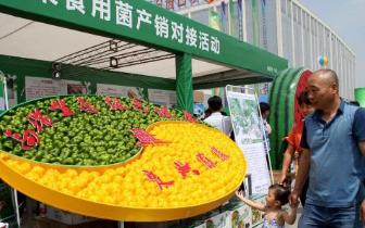 环京津贫困县农产品出山入市 千种亮相高碑