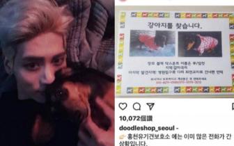 SHINee钟铉生前爱犬失踪 姐姐急坏网上求救