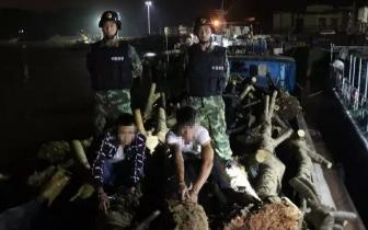 广西海警在防城港海域查获近百吨涉嫌走私固体废物