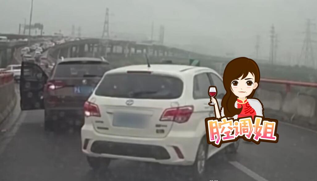 沪女司机高架上停车救猫 网友:不要命!