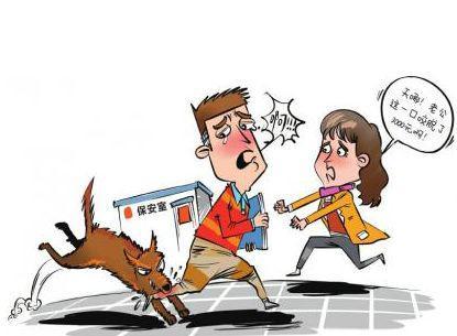 关于狂犬病 你必须知道的几件事