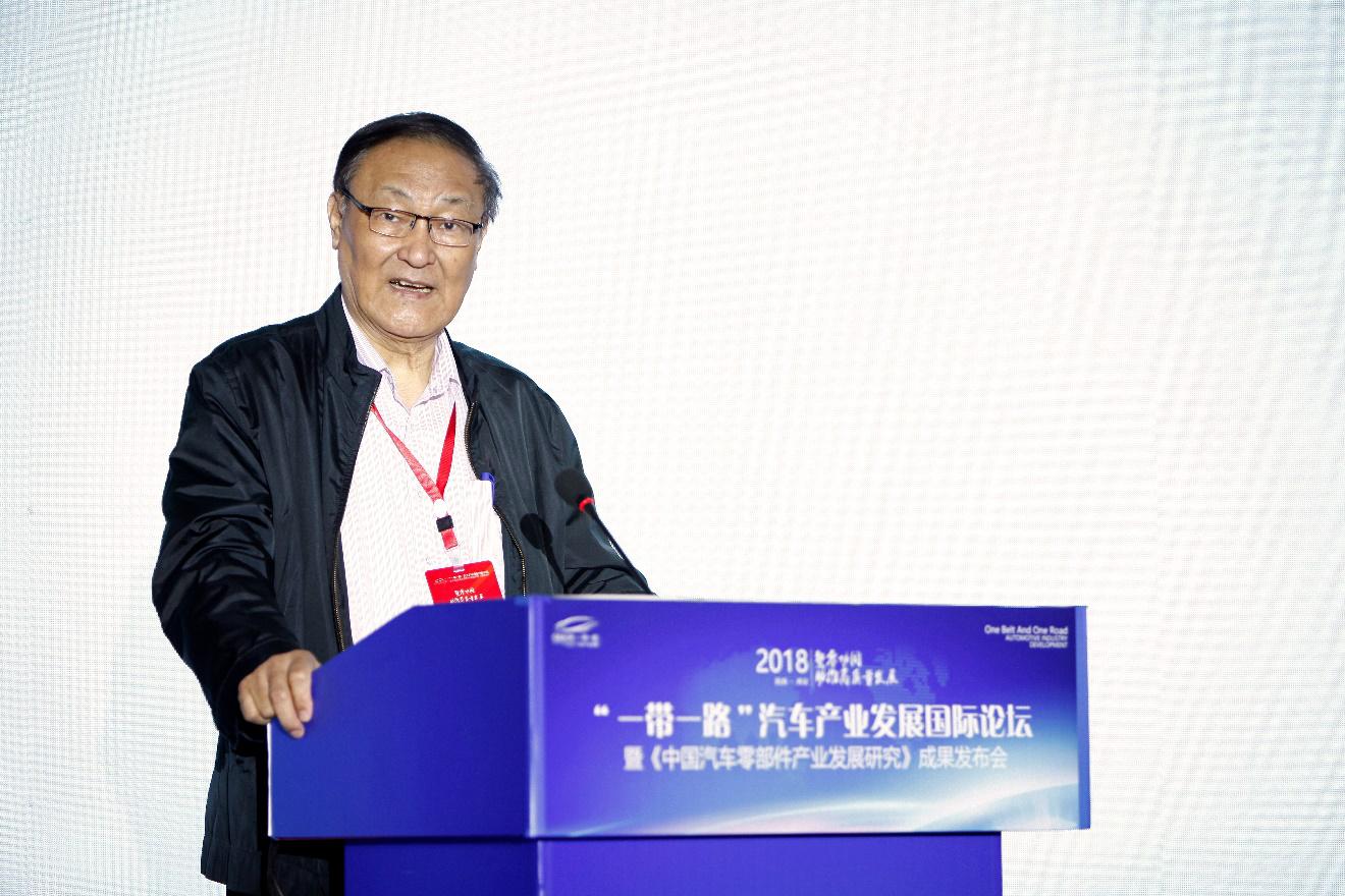安庆衡:新能源发展是重大机遇 但政府要注意甄别