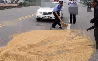 老汉骑电三轮失控侧翻车上小麦全洒 民警帮