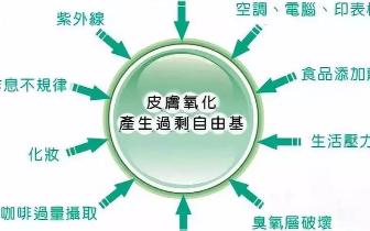 抗衰老产品商城:氧化衰老与自由基