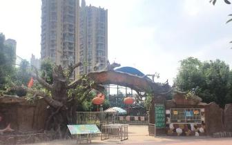 动物园|抚州梦湖动物园养家禽? 游客质疑被忽悠!