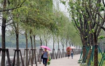 台江体育公园打造本土特色 为市民提供健身设施