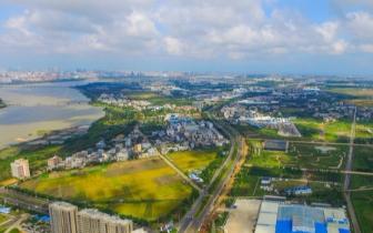概念性规划方案|江东新区概念性规划方案面向全球招标 3日正式启