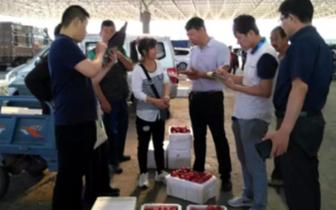 省林业厅来唐山开展暑期果品质量抽样例行检测