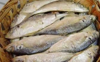 文明濠江·非遗篇丨鲜嫩的达濠鱼饭是怎么出炉的