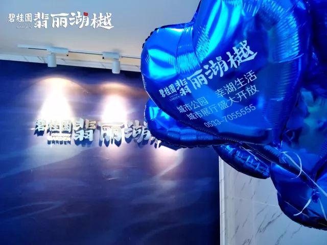 碧桂园·翡丽湖樾展厅盛放,视觉盛宴惊艳桓台