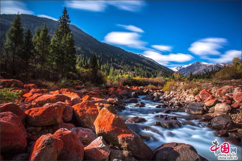 探密川西最神奇而美丽的植物王国—达古冰山!