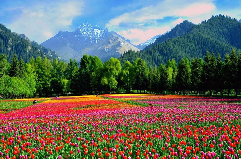乌苏佛山国家森林公园美景如画