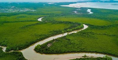 海口推行湿地保护修复工作