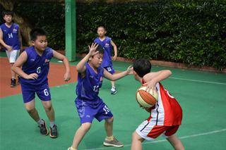 浦江县实验小学:让孩子把篮球玩出新花样