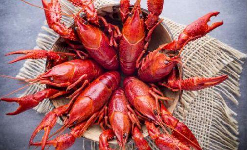 小龙虾供应链上的餐企混战:价格还能涨多久?