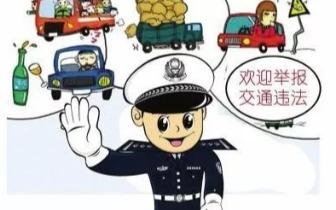 """""""交通违法全民拍""""曝光升级 逆行还能我行我素?"""
