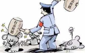 """29名传销嫌疑人被批捕 纠正漏捕23名""""传销老总"""""""