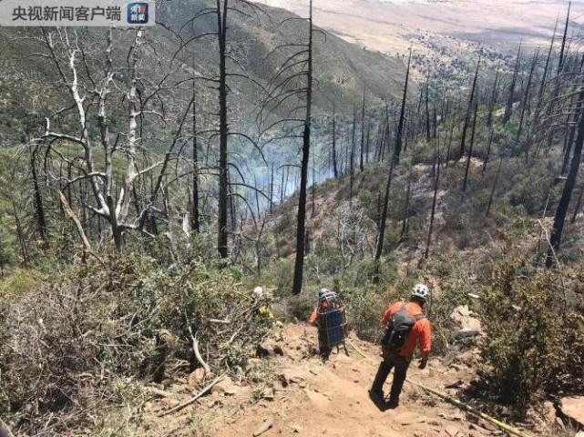 美加州圣地亚哥一小型飞机坠毁 3名中国公民遇难