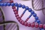 基因可以改写了 有望根除人类遗传病!