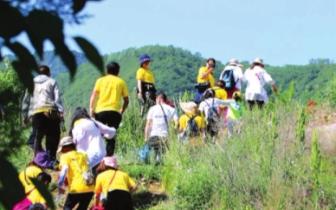 平凉举行全国群众登山健身大会