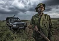 抓住那个偷猎贼!高科技成了非洲应战的最后武器