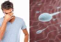 做男人难,两个月心理压力就能降低精子活性